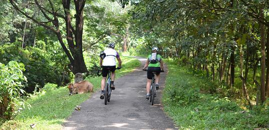 Kerala Bike Tour