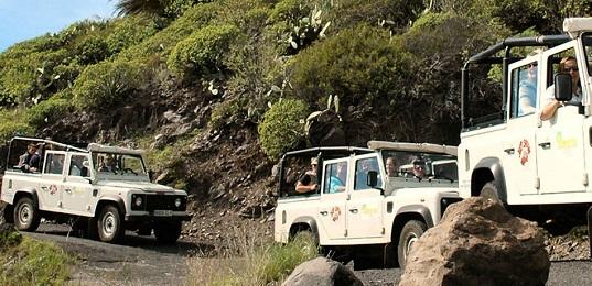 Orchid Jeep Safari Sikkim